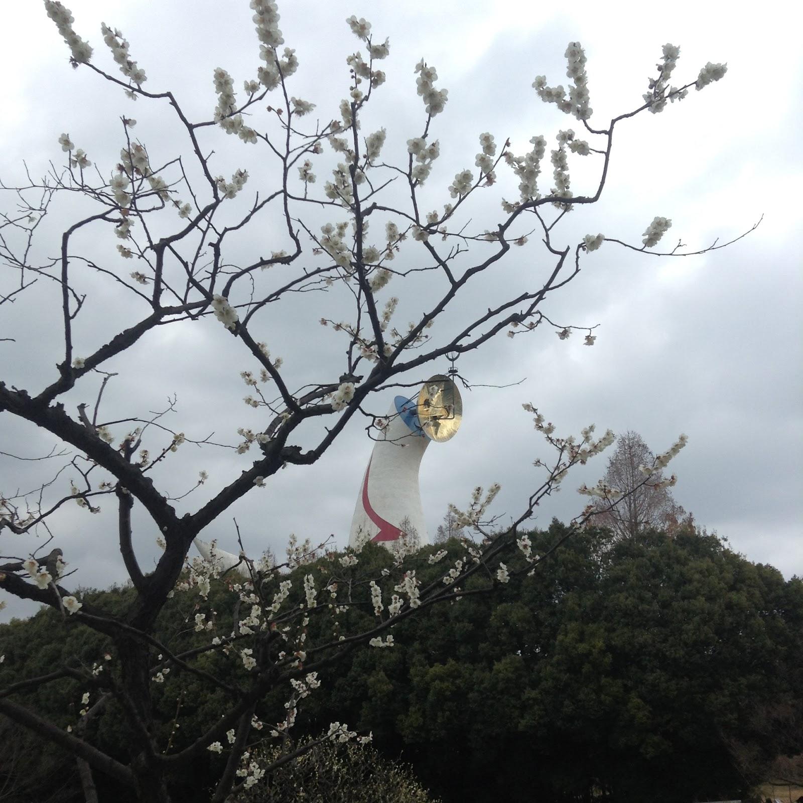 Plum blossom Banpaku Kinen Koen