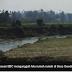Kesaksian wartawan BBC di Rakhine: 'Saya melihat desa Muslim sengaja dibakar'