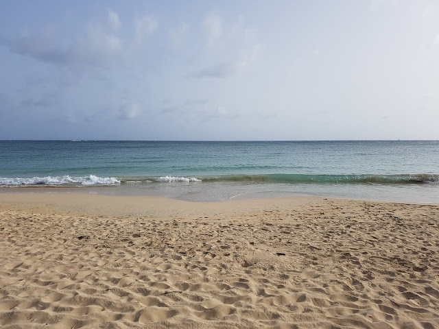 plage-salines-martinique