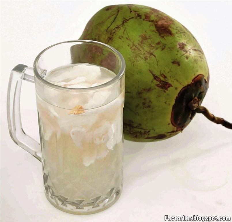 Makanan dan Minuman Pelangsing Alami