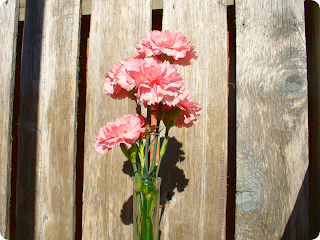 A narrow clear glass vase with pink carnations in front of the wooden seat planks of a bench.