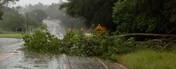 Chuva e ventos fortes causam transtornos na região