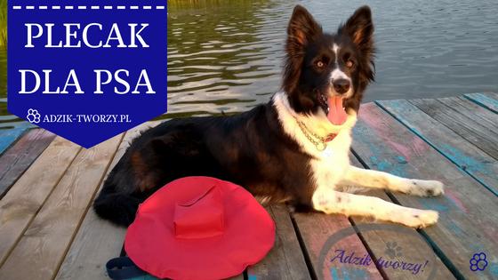 DIY: Jak uszyć plecak dla psa