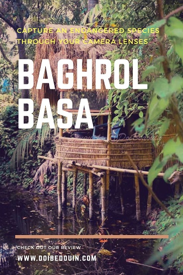 Everything You Need to Know About Baghrol Basa, A Homestay Establishing Ecotourism Through Protection of Endangered Species doibedouin