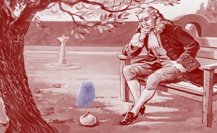 Newton il cane e la mela