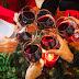 Vinhos para harmonizar com pratos típicos de Natal e Ano Novo