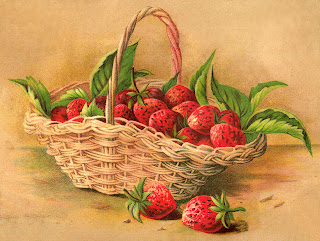 fruit strawberry illustration digital