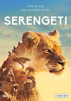 Serengeti 2019 Dvd