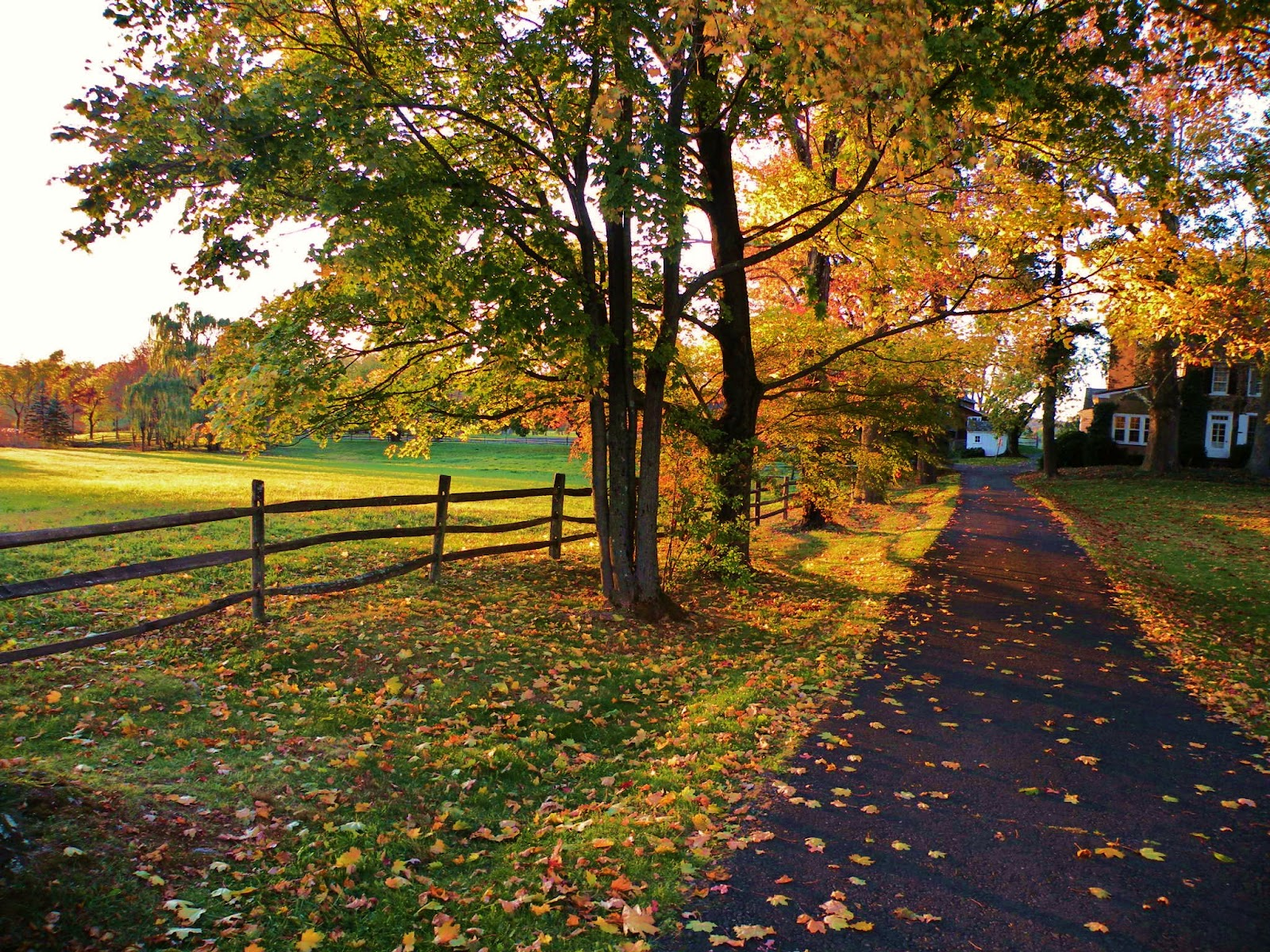Beautiful Fall Scenery Wallpaper Only In Bucks County Only In Bucks County Early Autumn