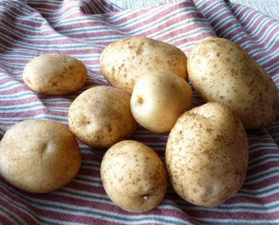Envol Potatoes