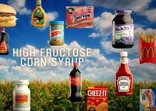 Diet plan for fructose malabsorption