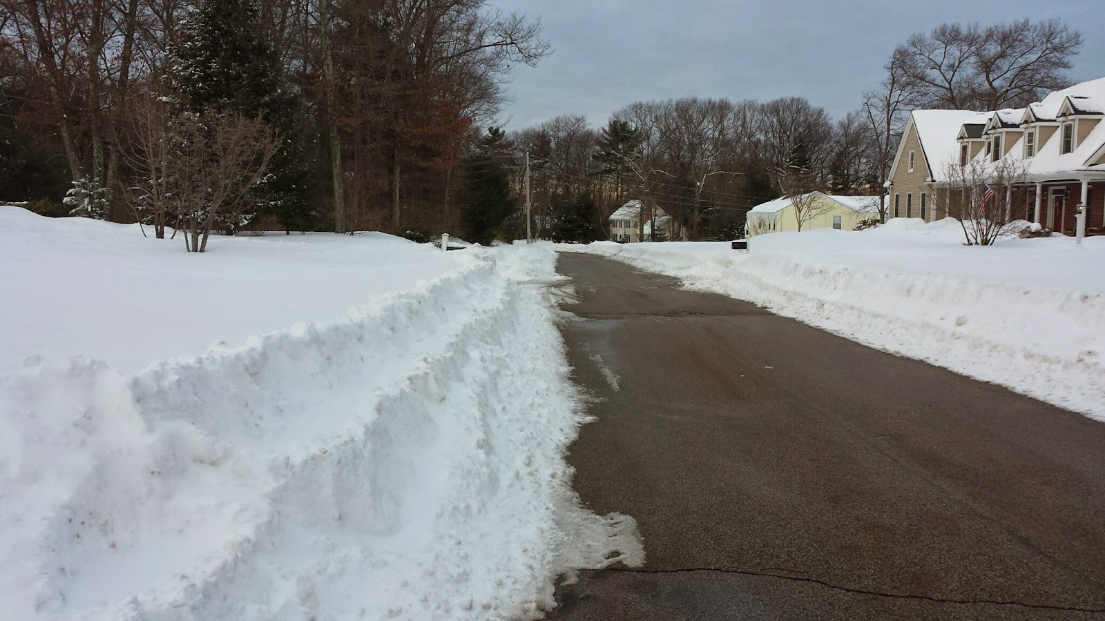 Look what a little sun can do. Tuesday morning the street was completely white. By late afternoon, it lookedlike this