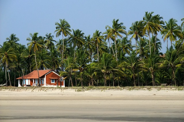 Anjuna beach is one of the most popular beaches in Goa, so throughout the year, you will get tourists there. Most of the tourists come here between the winter months, November to February. This is the best time to explore the beaches. Whether it is parties or Watersports, Most of the shacks will be closed at other times, and you won't find water sports as well. Expect more people in the month of December and January. November or February is better for those who don't want a crowd.  Fun facts on Anjuna Beach.