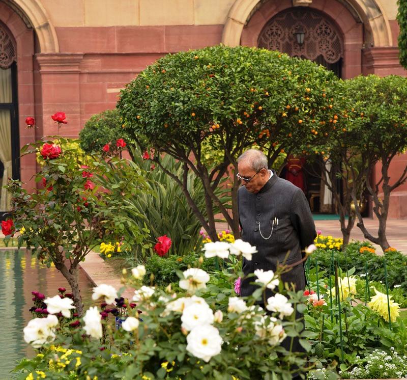 Punjab screen president opens rashtrapati bhavan s annual Mughal garden booking