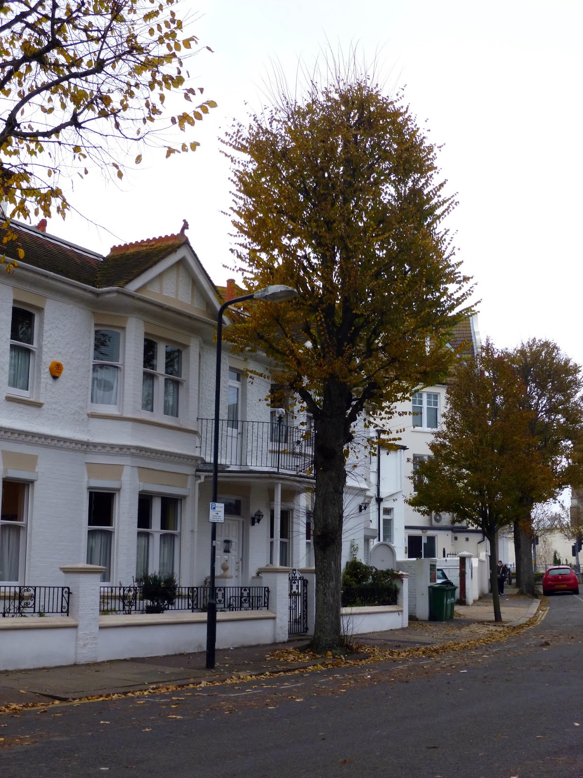 Hove daily photo fallen leaves vallance road for Wibbo me