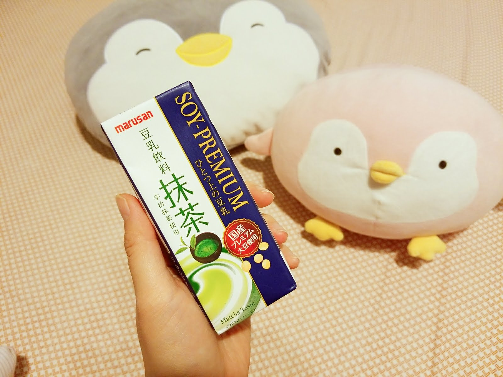Marusan Soy-Premium Matcha Flavored Soy Milk