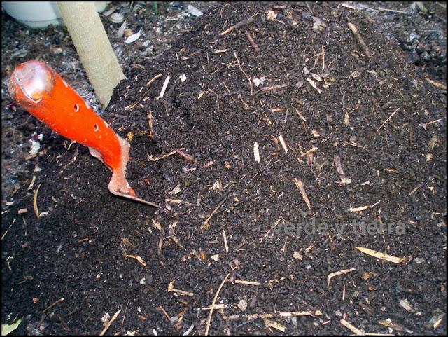verde y tierra: intrusos en nuestro compost