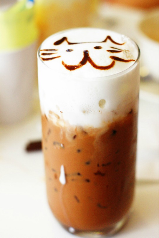 cat cafe iced coffee