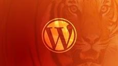Become a WordPress Developer: Unlocking Power With Code