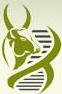 National Institute of Animal Biotechnology (www.tngovernmentjobs.in)
