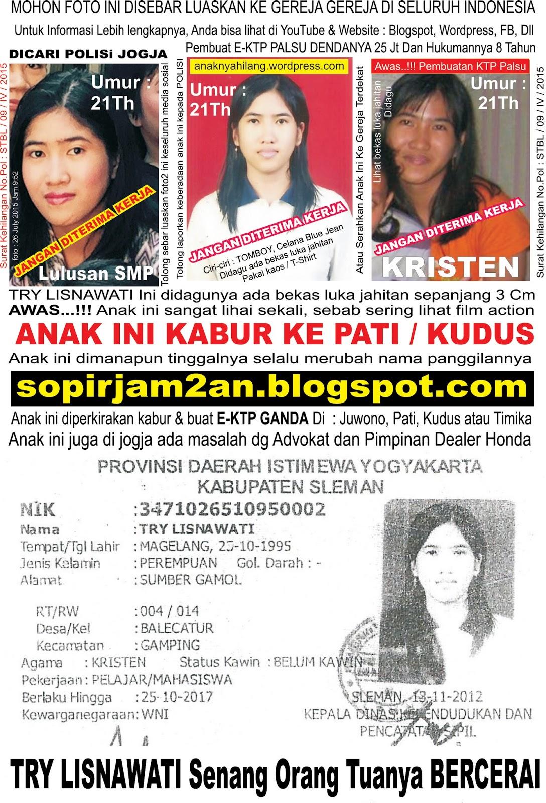 Agen Baja Ringan Di Denpasar Tour And Travel, Jual Tiket Promo, Jasa Antar Jemput ...