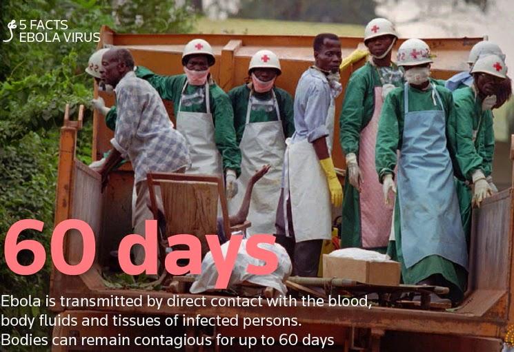 ebola virus lagos nigeria