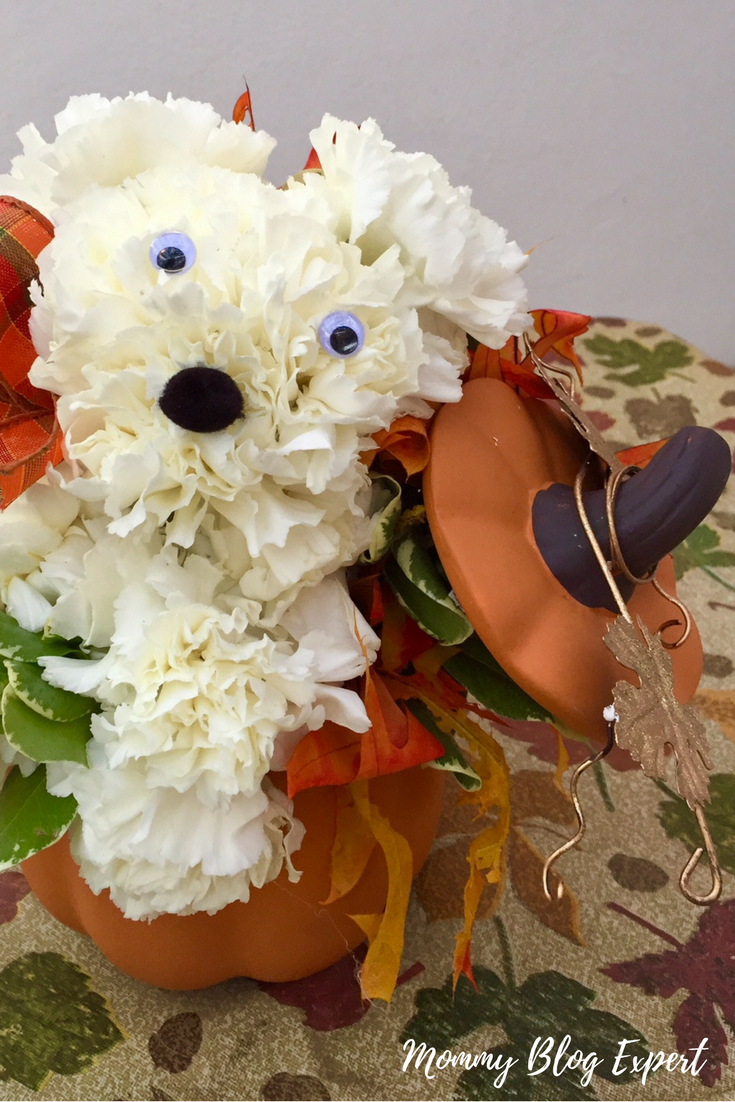 Mommy blog expert party animal fall fresh flower bouquets for encircling this cute dog is a garden of real dried oak leaves in all their fall splendor and greenery planted inside a beautiful ceramic artisan pumpkin izmirmasajfo Gallery