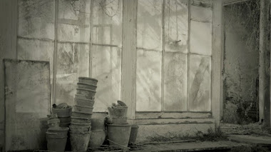 Resucitando jardines históricos. Rachel Warne. Faded Glory