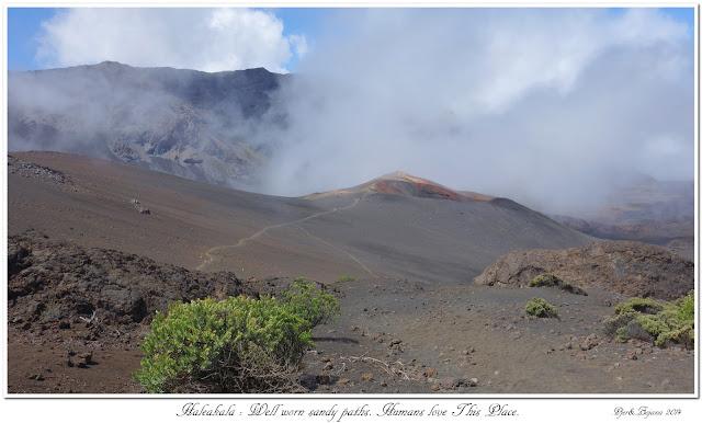 Haleakala: Well worn sandy paths. Humans love This Place.