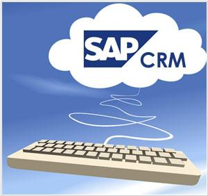 SAP Training Material ~ HELPING HANDS