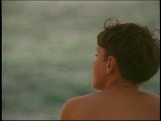 Movies Pelis Iki Haole Nico S Hawaiian Adventure 1995