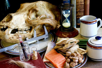 Dissecting the animal diet, past and present