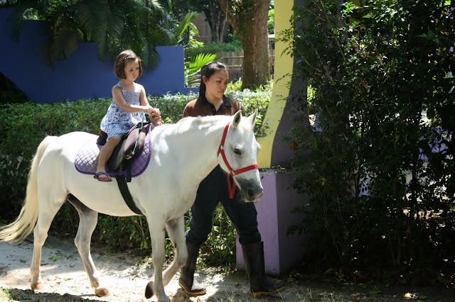 pony_zoo_singapur