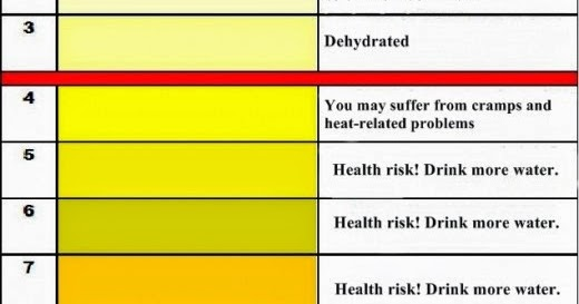 Download Urine Color Chart and Its Meaning HEALTH NEWS OF THE YEAR