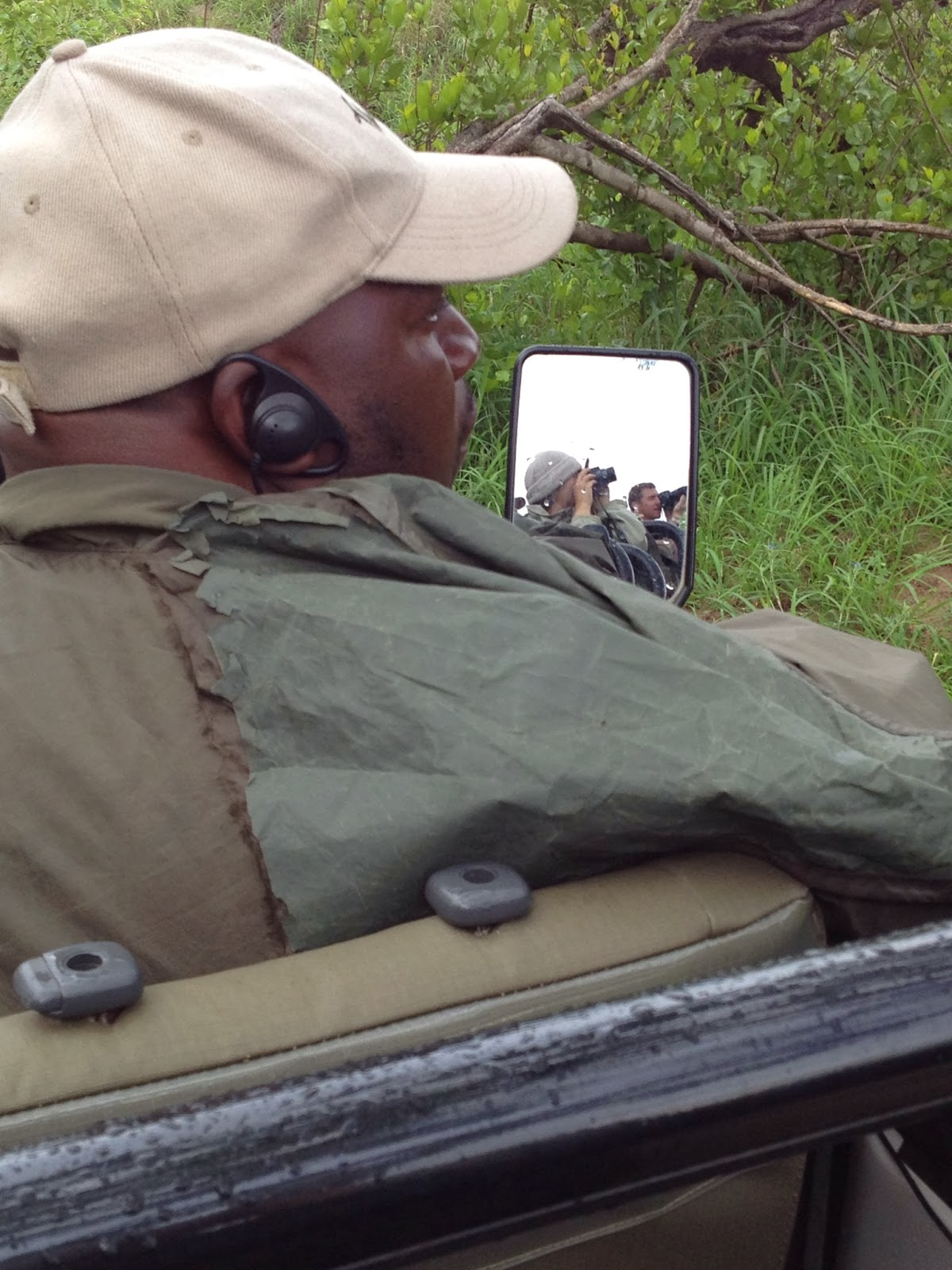 Sabi Sands - Charles patiently waits for us to snap pictures of the leopard