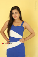 Cute Telugu Actress Shipra Gaur High Definition Po Gallery in Short Dress  0281.JPG
