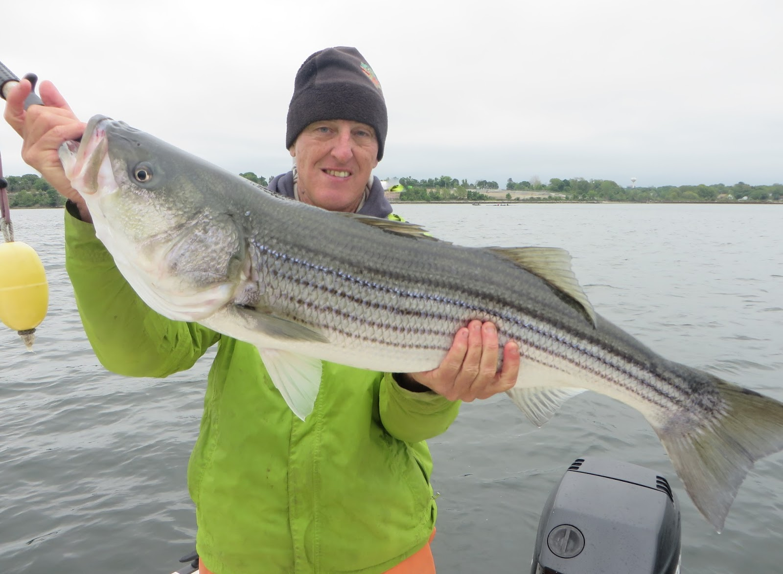 Rhode island striped bass pic of the day big fish on for Best striper fishing spot in ri