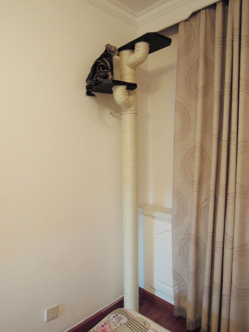 Diy floor to ceiling cat tree meow for Diy cat tree pvc pipe