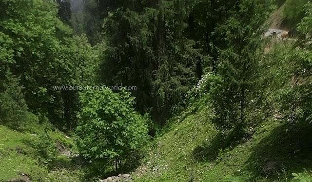 Himachal Pradesh, trek