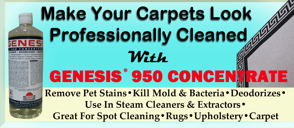Professionally Clean Your Carpets Yourself ...