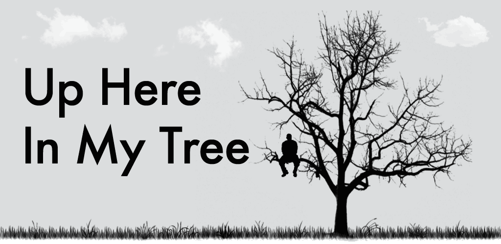 Up Here In My Tree: A Pearl Jam Blog