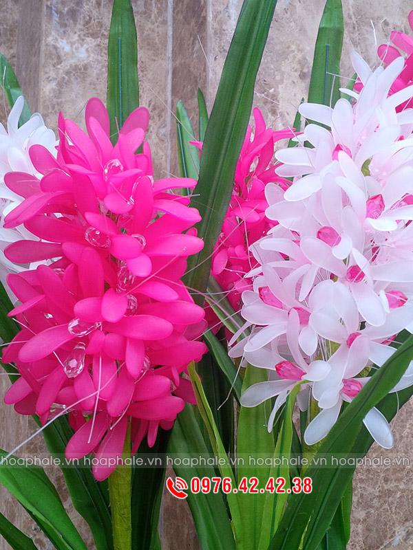 Mẫu hoa tiên ông - hoa pha lê
