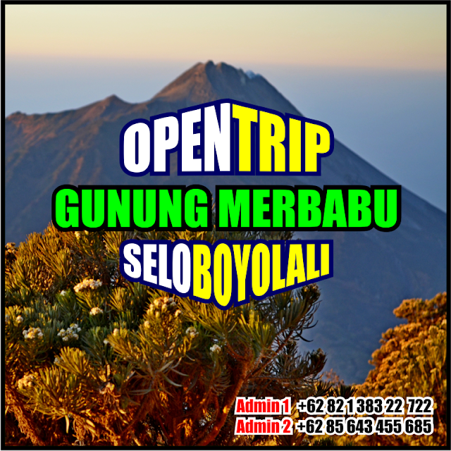 Open Trip Murah Gunung Merbabu 2021 Jalur Pendakian Via Selo Boyolali Jawa Tengah