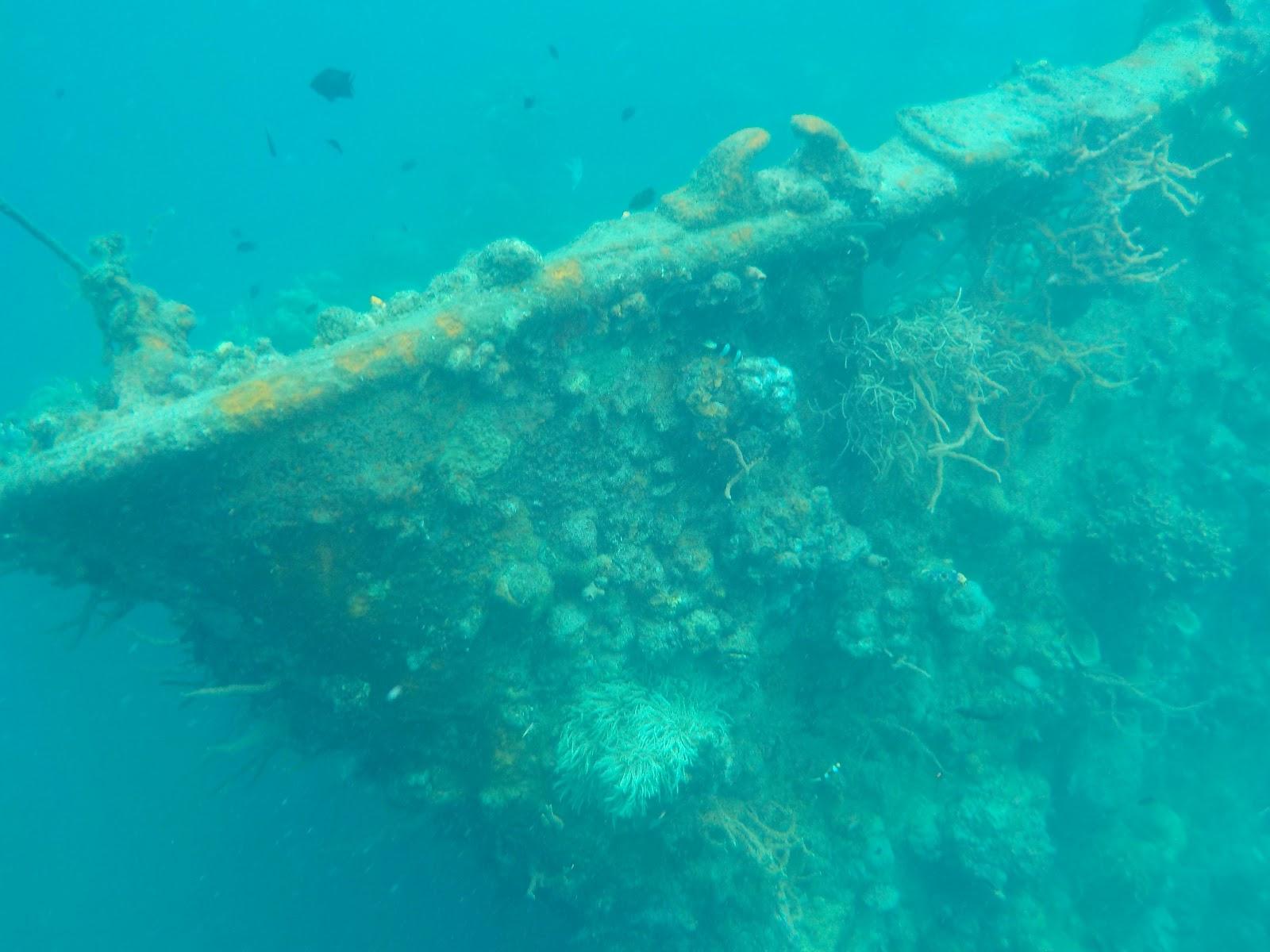 Lezbetravellers : Philippines day 24: Coron Reefs and Wrecks Tour