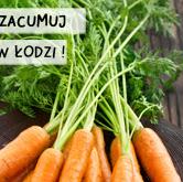 Zaproszenie na IX Międzynarodowe Targi  Żywności Ekologicznej i Naturalnej NATURA FOOD