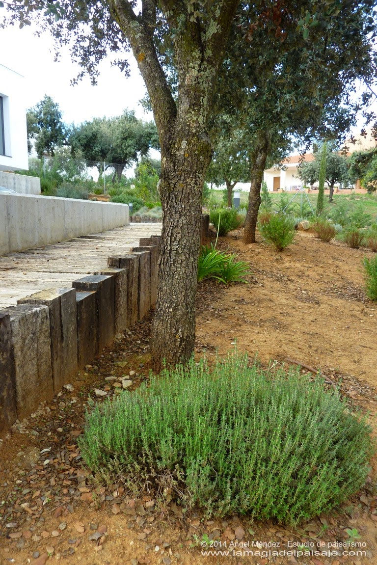 Paisajismo en Mérida, Badajoz