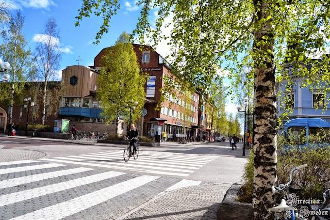Co robić w Holmsund?