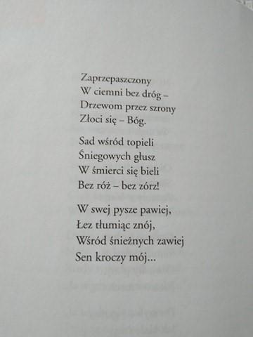 Czytamy Wiersze Bolesława Leśmiana Wiersz Noc Zimowa