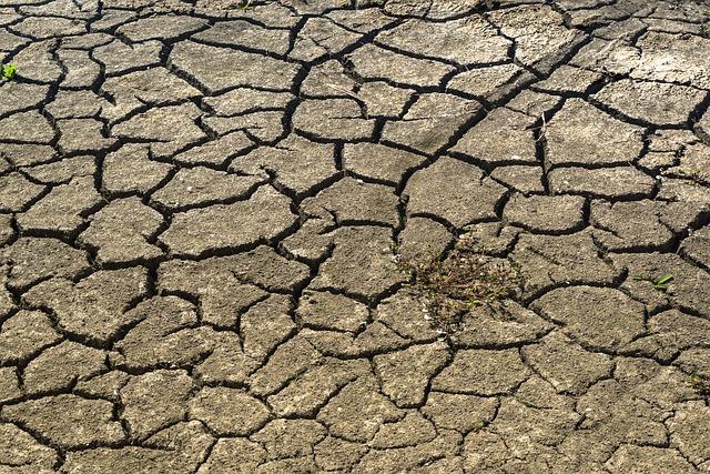 كيف تتكون التربة