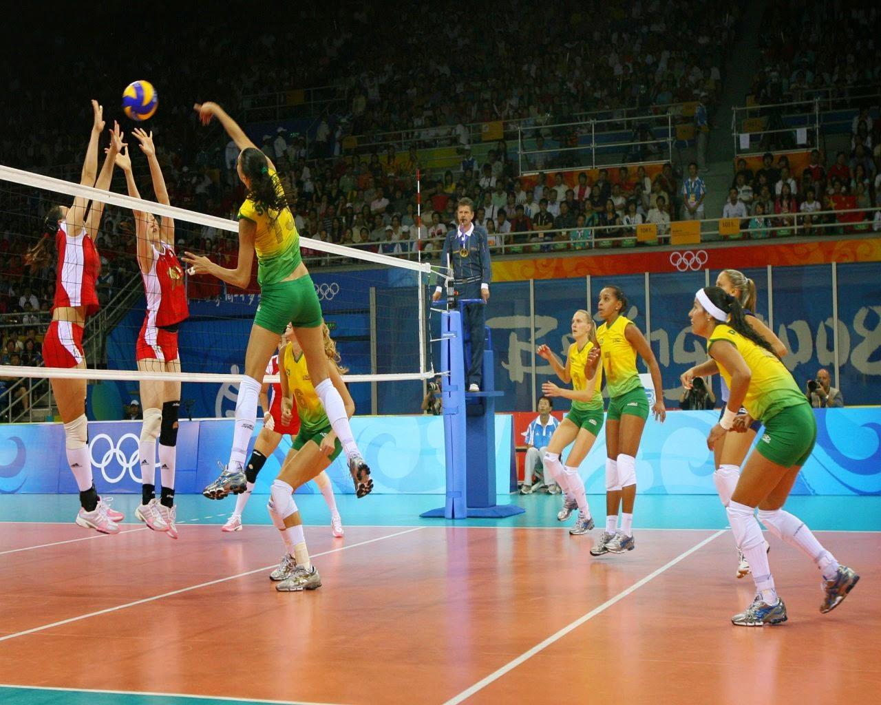 Wikipedia voleibol